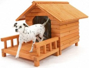 Tips To Build A Dog House For Your Loved Ones!