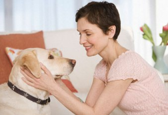 Pet Care Instructions To Keep Your Pet Safe And Healthy!