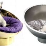 Bubble Beds For Pampering Your Pet In The Luxurious Way!