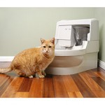Cat Genie Cat Box To Relieve From The Tension Of Litter Box Cleaning!