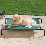 Coolaroo Pet Bed For The Health And Happiness Of Your Pet!
