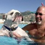 How To Teach Your Dogs To Swim?