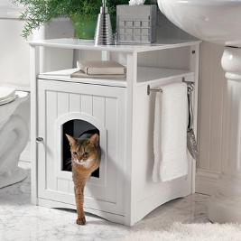 kitty washroom