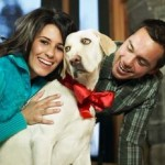 How To Select A Perfect Dog That Satisfies Your Family Requirements?