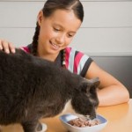 How To Choose The Safest Pet Food?