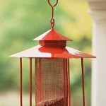 Birdscaping Tips To Attract Birds To Your Backyard