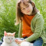 How To Develop Strong Bond With Cats?