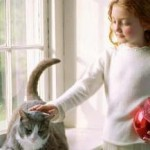 Choosing The Right Pet For Your Particular Lifestyle