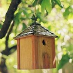 5 Tips On Building Bird Houses
