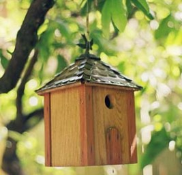 bird houses