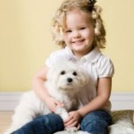 Is Your Dog Smarter Than A Two-Year Old Toddler?