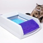 Limitations Of The Automatic Cat Litter Boxes