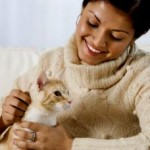 Common Diseases That Can Affect Your Pet Cat