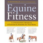 Fitness For Horses, Smart Idea To Keep Them Healthy