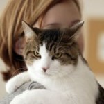 Your Touch And Its Effects On Your Pet Cat