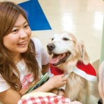 Interaction With Pets Helps Healing Severe Illnesses