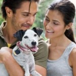 Is Adopting A Dog The Right Step For You?