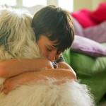 Pet Allergens Are Not Impossible To Handle Or Prevent
