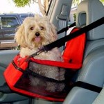 Provide Safe And Secure Travel To Your Pet With Dog Car Seat