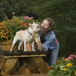 Can the Garden Be a Safe Haven for Your Pet?