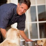 How Do You Know You Are Choosing the Healthy Dog Food for Your Pet?