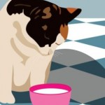 Choosing Healthy Cat Food for Your Pet
