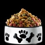 Learn About the Reasoning Behind Holistic Dog Food