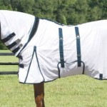 Practical Horse Tacks and the Importance of Choosing the Right Bit
