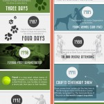 The History of Crufts