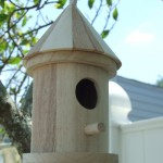 useful tips to remember while you purchase a bird house