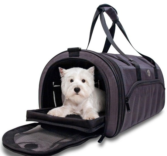 guidebook on choosing pet carriers