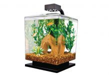 The Top Five Fish Tank Gadgets Every Aquarium Owner must have