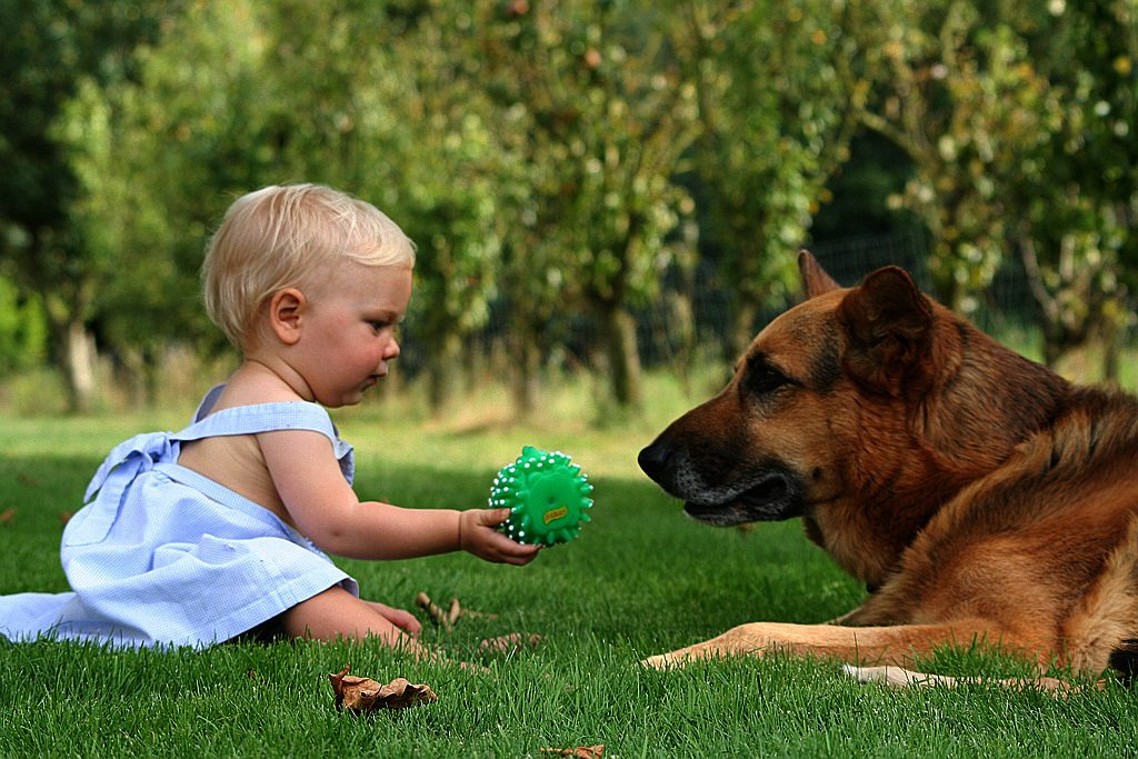 Ideas to Make Kids Bond with Your Pets