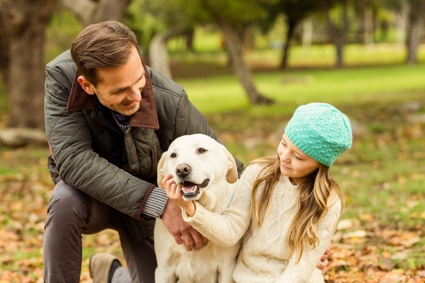 6 Ways to Improve Your Bond With Your Pet