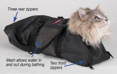Get Help For Cat Grooming From Cool Grooming Toys The