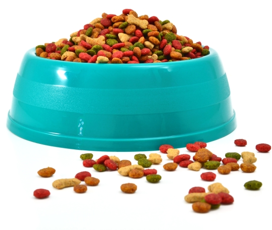 secrets for choosing safe and healthy pet food