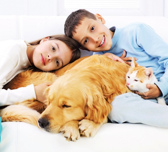 signs to know that your family is ready for a pet