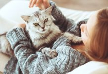 5 Things you should avoid doing with your cats