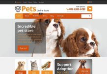 5 Best Online Pet Stores